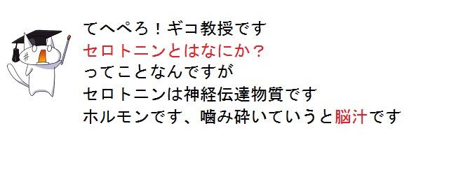 01_20120228100942.jpg