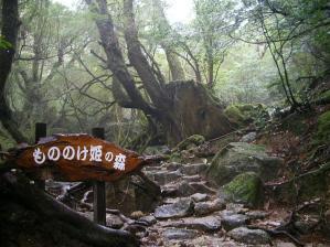 799px-もののけ姫の森