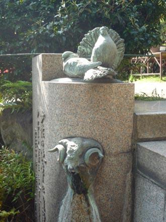 鳩山会館池の鳩①