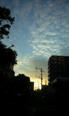 秋の夕日2