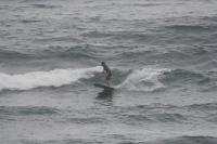 2010/ 8/ 12  1