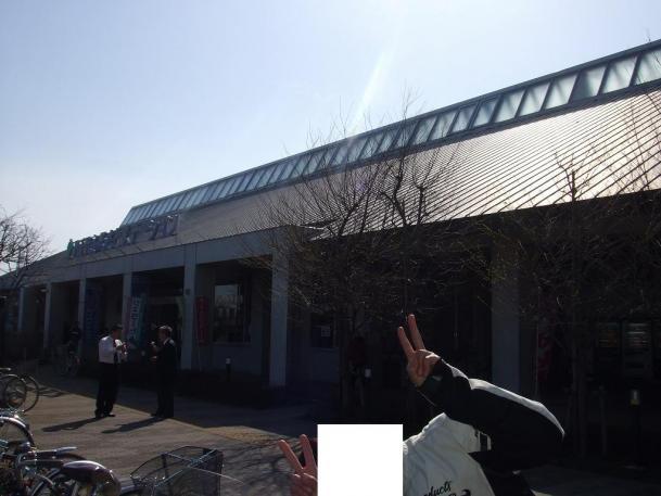 千葉の駅10