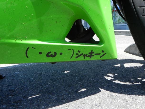 白玉埼玉02