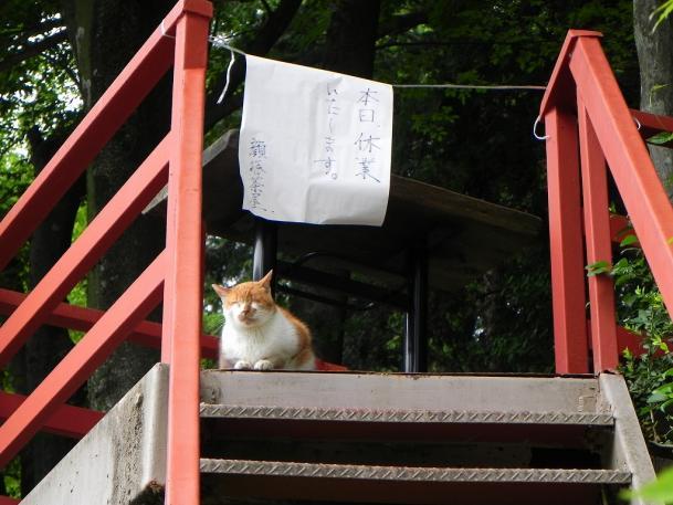 ゆっくり埼玉17