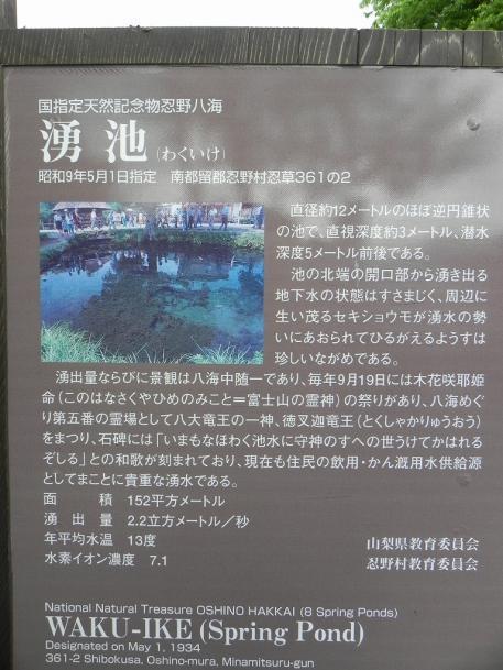 忍野八海02