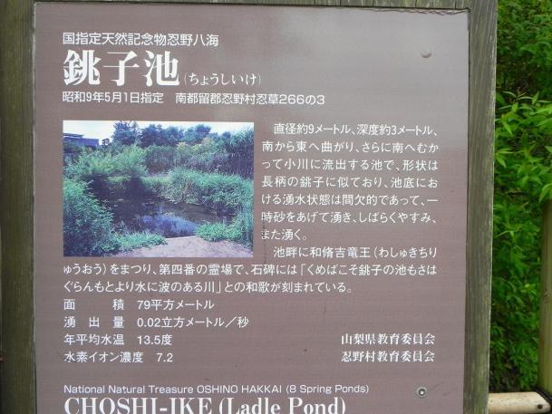 忍野八海11