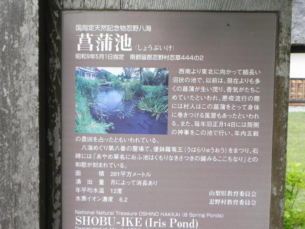 忍野八海37