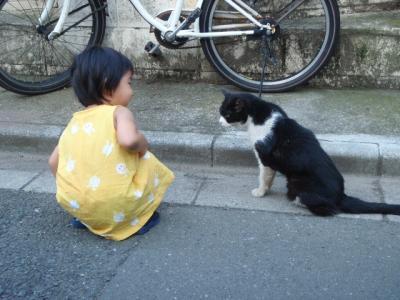 娘は猫とお話ができるようになりました。