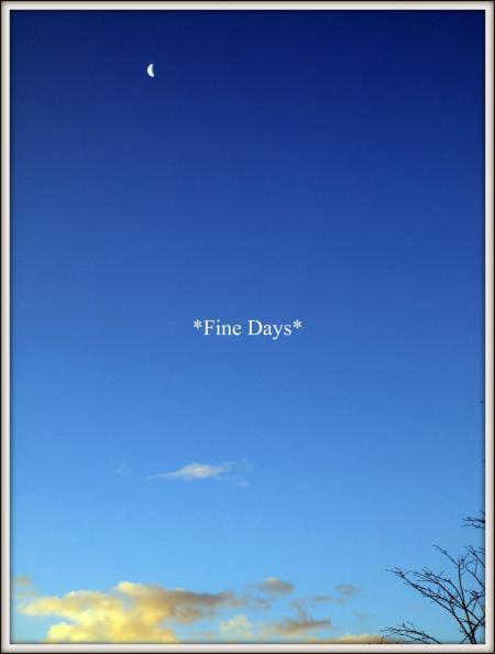 朝の風景(1月8日)