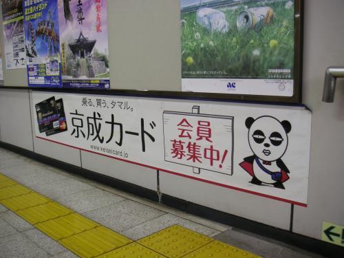 京成パンダ1