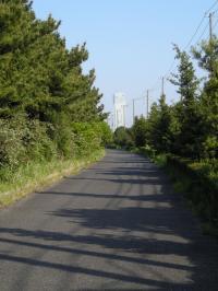 20100502湾岸ロード