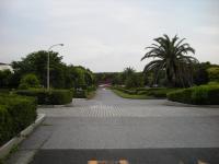 20100608稲毛海浜公園