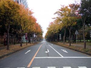 201007201.jpg