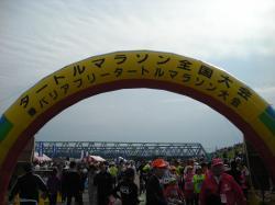 201010171.jpg