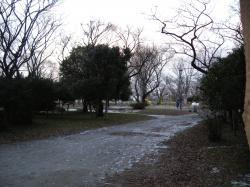 2011011312.jpg