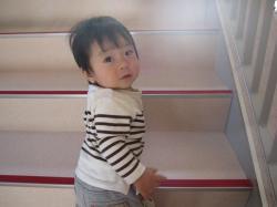 階段ヨイショ