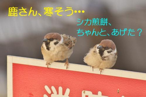 110_20120325231421.jpg