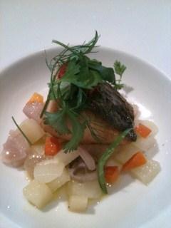 プリミバチ 魚