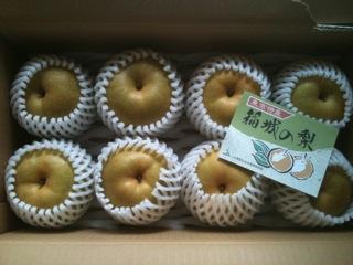 稲城の梨3