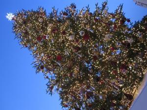 ガーデンプレイス クリスマスツリー