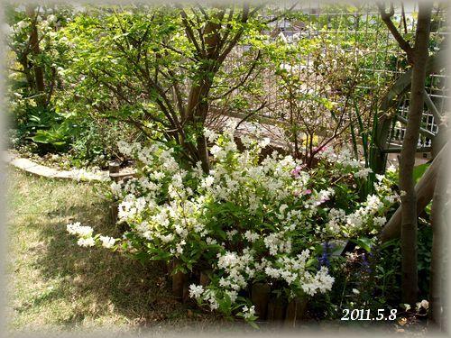 2011-5-20-2.jpg