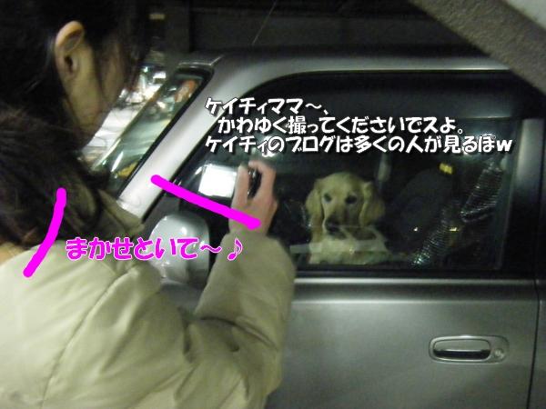 DSCF3007_20110310234329.jpg