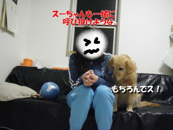 DSCF9010_20110319230834.jpg