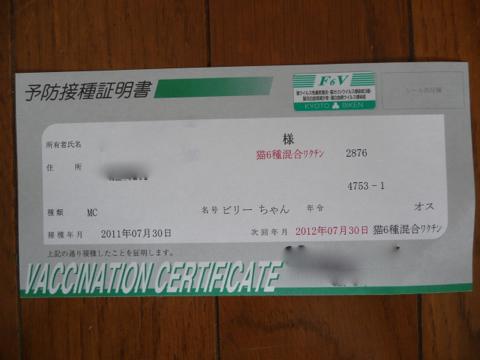 110731-3