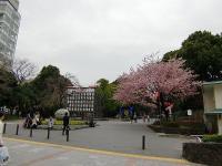 上野公園02