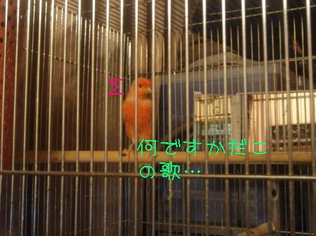 逕サ蜒・092_convert_20091112144953