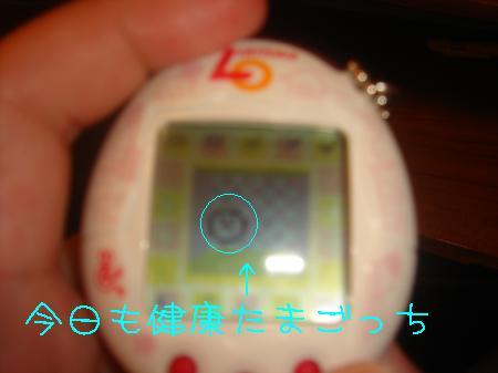DSC03215_convert_20091216191111.jpg