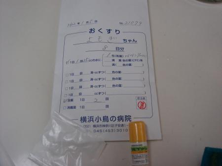 DSC03260_convert_20100105123059.jpg