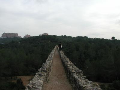 タラゴナ9