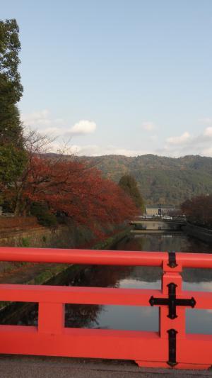 京都グルメ紅葉4