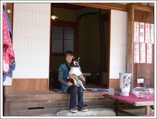 10.04.05  花見3(岩国・錦帯橋)022