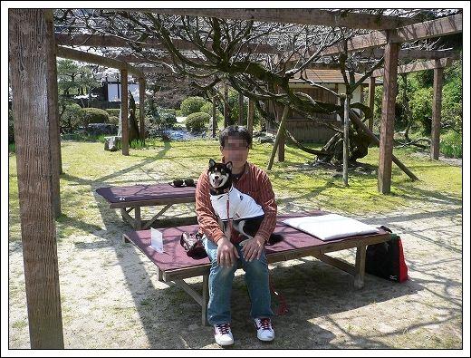 10.04.05  花見3(岩国・錦帯橋)023