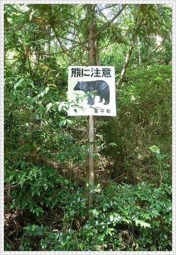 11.09.23 龍頭山登山 006