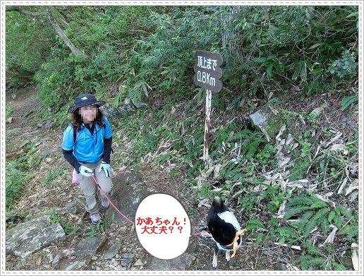 11.09.23 龍頭山登山 031