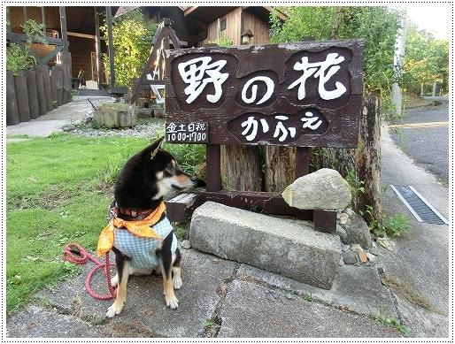 11.09.23 野の花カフェ 011