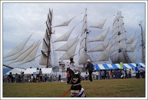 11.10.15 帆船まつり 海王丸 033