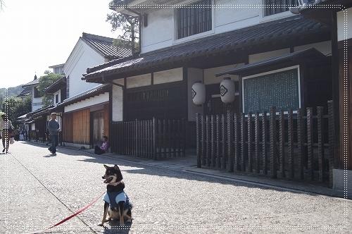 11.10.16 倉敷美観地区 04