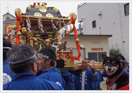 11.11.03 尾道ベッチャー祭り 01