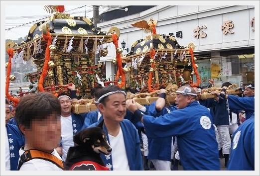 11.11.03 尾道ベッチャー祭り 03