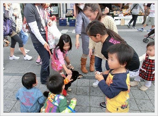 11.11.03 尾道ベッチャー祭り 05