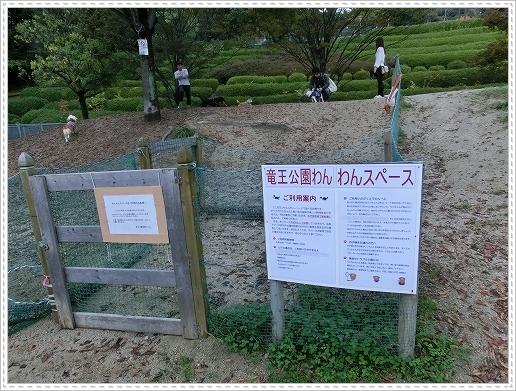 11.11.06 竜王公園 045