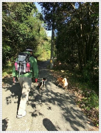 11.11.26 野呂山登山 005