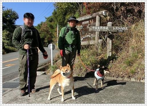 11.11.26 野呂山登山 003