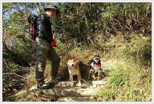 11.11.26 野呂山登山 022