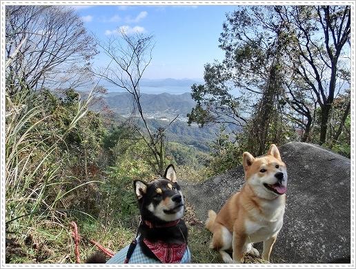 11.11.26 野呂山登山 041