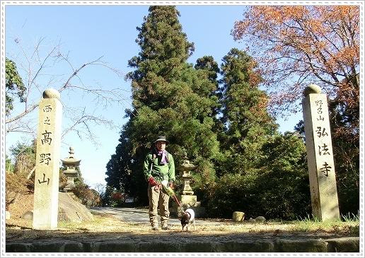 11.11.26 野呂山登山 074